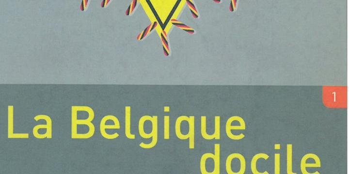 La Belgique docile. Les autorités belges et la persécution des Juifs en Belgique durant la Seconde Guerre mondiale.